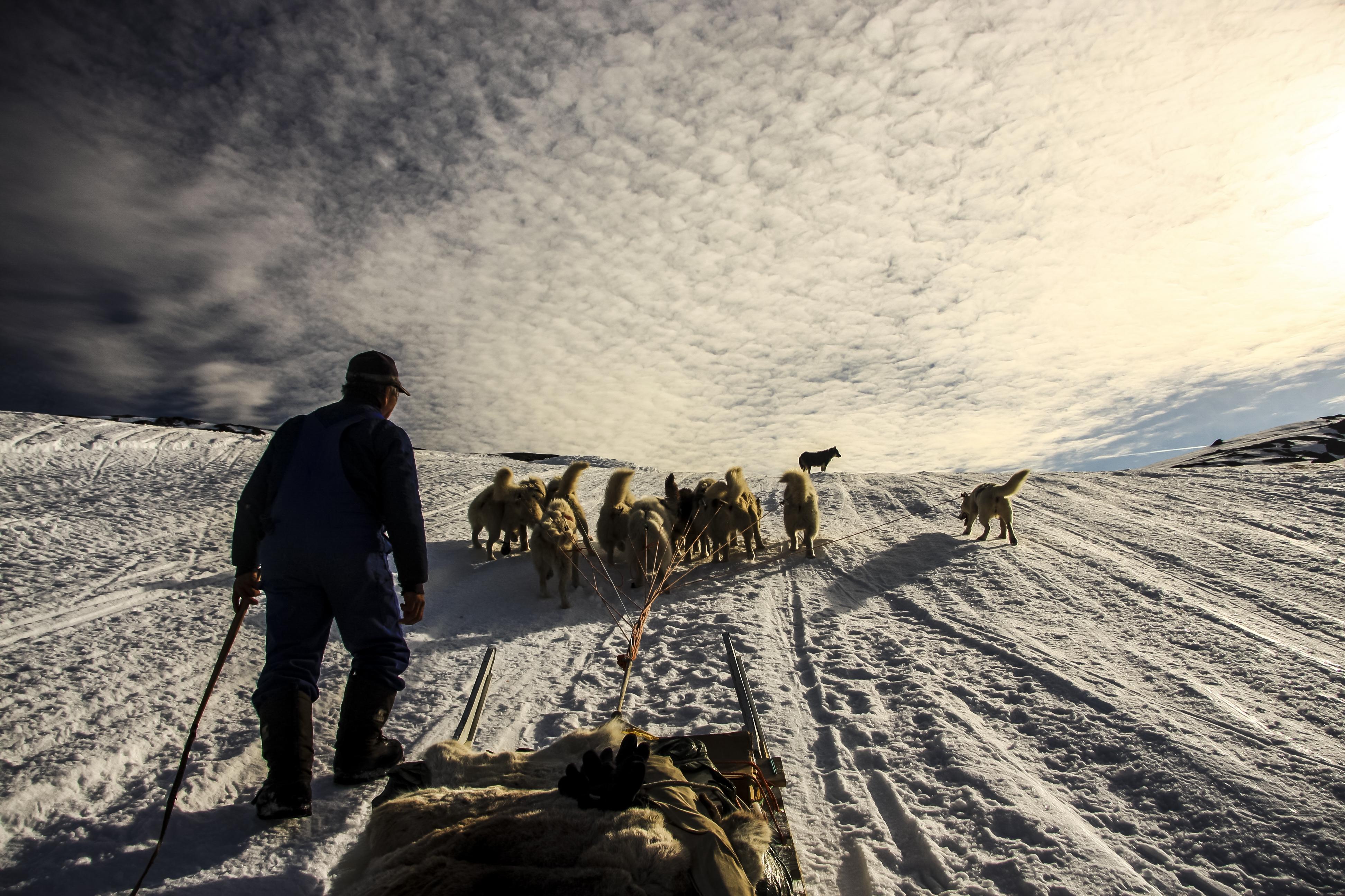 Dog Sled and Northern Light : Kangerlussuaq to Sisimiut