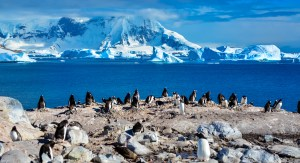 Antarctica – Western Peninsula (Part – 1)