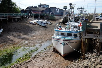 low_tide_at_hall__s_harbour_ns_by_benny007-d5fy2dh