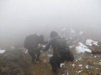 As you can see, tough hiking conditions on Iliniza Norte