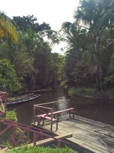 Start of our jungle boat trip