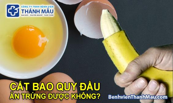 cắt bao quy đầu ăn trứng được không