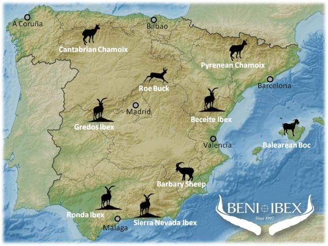 Mapa_web_ingles
