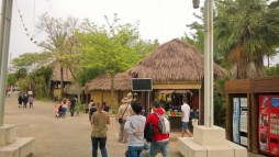 Tejados renovados en Anaconda