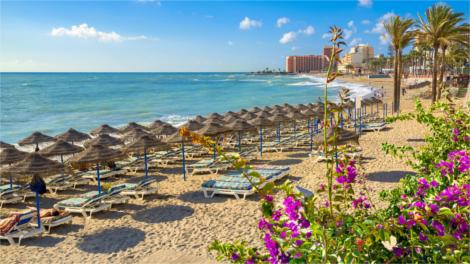 Malaga Beach with Buganvilla flowering plant