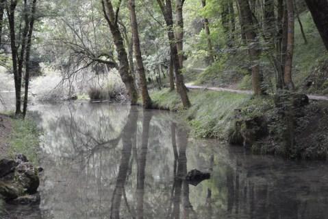 Nacimiento del río Ebro.