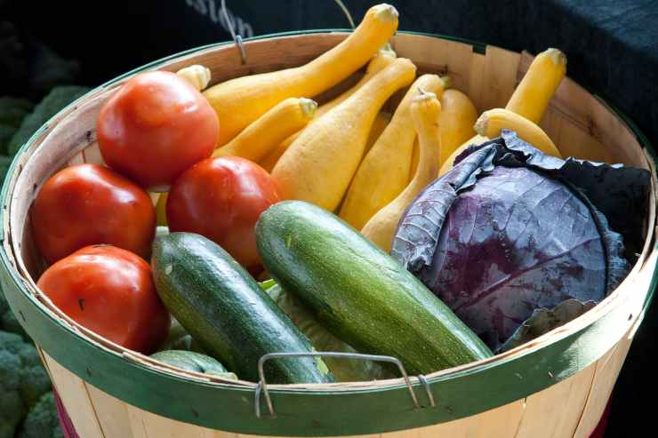 assorted variety of vegetables on basket