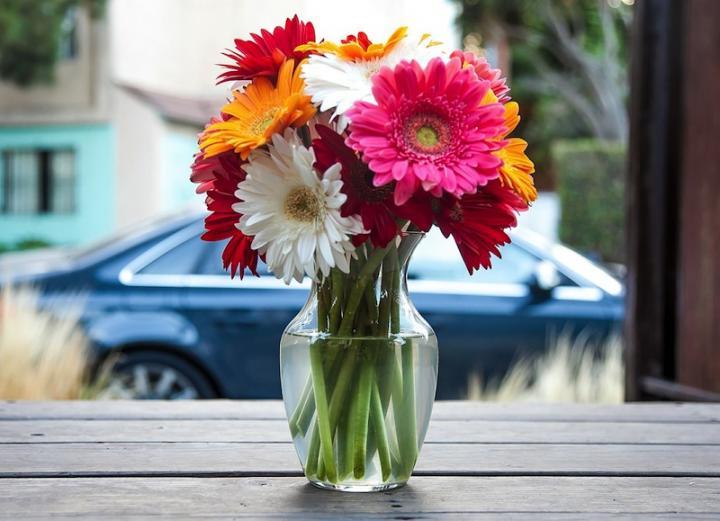flower-vase-fresh