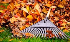 Best Leaf Rake Buyer Guide