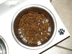 honden voeding spelletjes eetbak