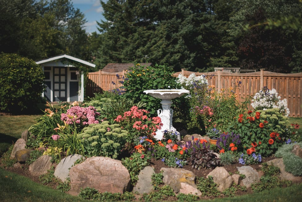 backyard flower garden with birdbath