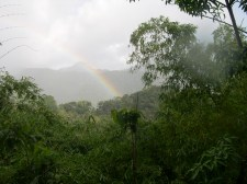 Dominica - 360 days of rain per year - and thousands of rainbows.
