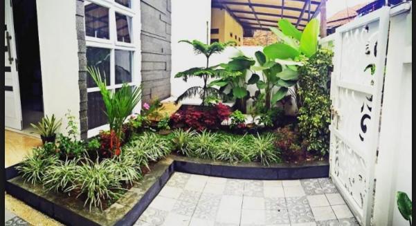 Cara Menata Bonsai Taman Depan Rumah Minimalis Yang Baik
