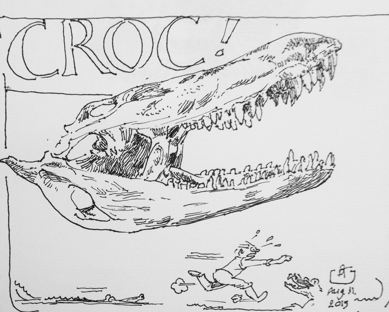 Crocodile Skull Drawing