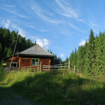 forestHouse_512