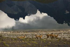 Parque Torres Del Paine, Chili, Mon voyage en Argentine