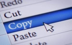 Working to Avoid Plagiarism on the Internet
