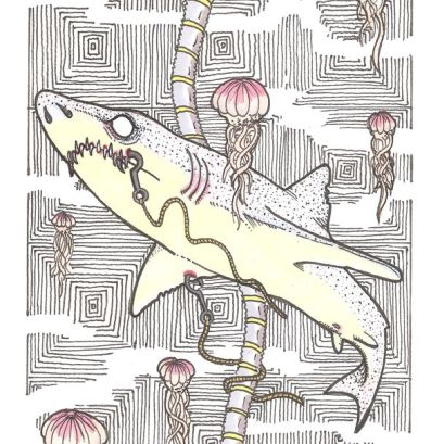 underwatershark