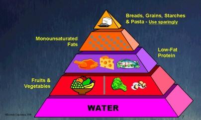 Afbeeldingsresultaat voor the zone diet meme