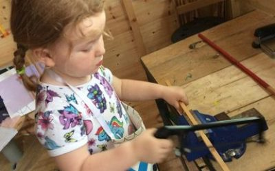 Using tools in the invention shed