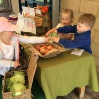 Creating a fruit and vegetable shop