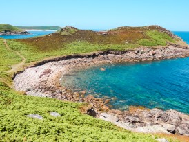IMG 2531 - Isles of Scilly