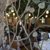 La Jolla Groves by Ben Sutorius