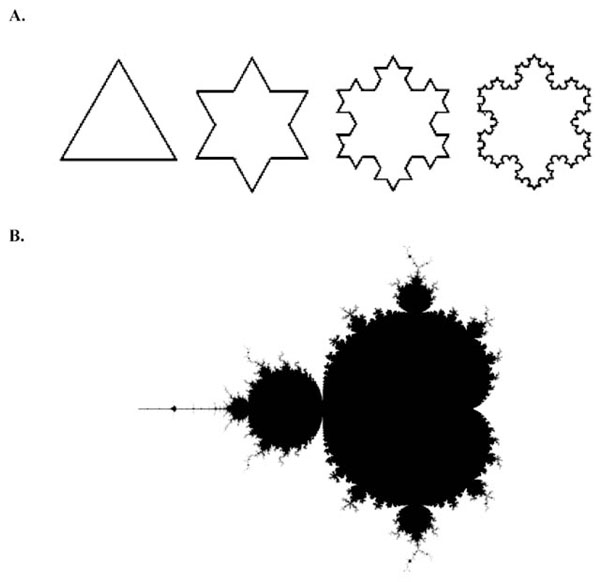 Deterministic Chaos and Fractal Complexity in the Dynamics