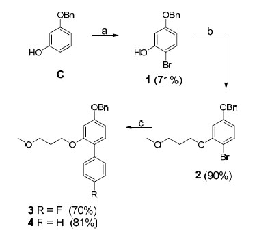 Design and Synthesis of Hydroxyethylene-Based BACE-1