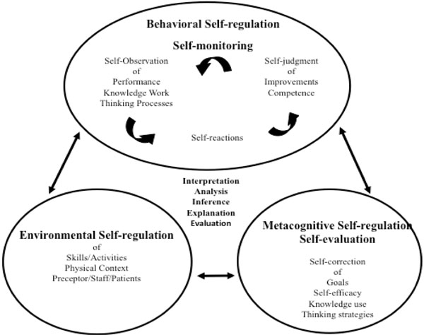 Promoting the Self-Regulation of Clinical Reasoning Skills in Nursing Students ~ Fulltext