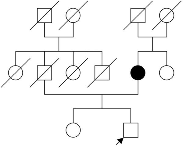 Pharmacogenetics — Getting Closer ~ Fulltext