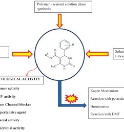 chemistry and pharmacological activities of biginelli product a brief overview [ 2325 x 1747 Pixel ]