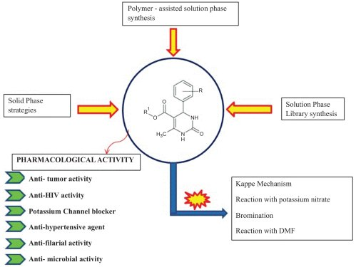 small resolution of chemistry and pharmacological activities of biginelli product a brief overview