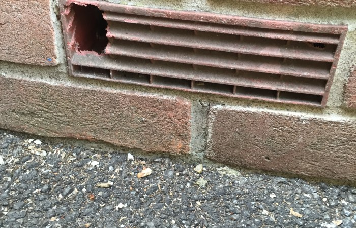 mouse damage to brick air vent - pest control