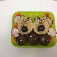 A Dose of Totoro
