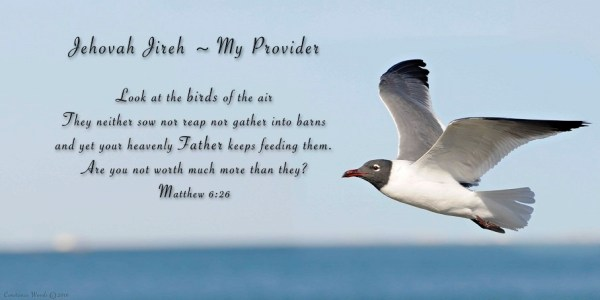 Image result for Biblical Sayings of God As Jehovah Jireh