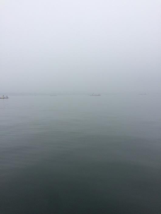 金田湾濃霧