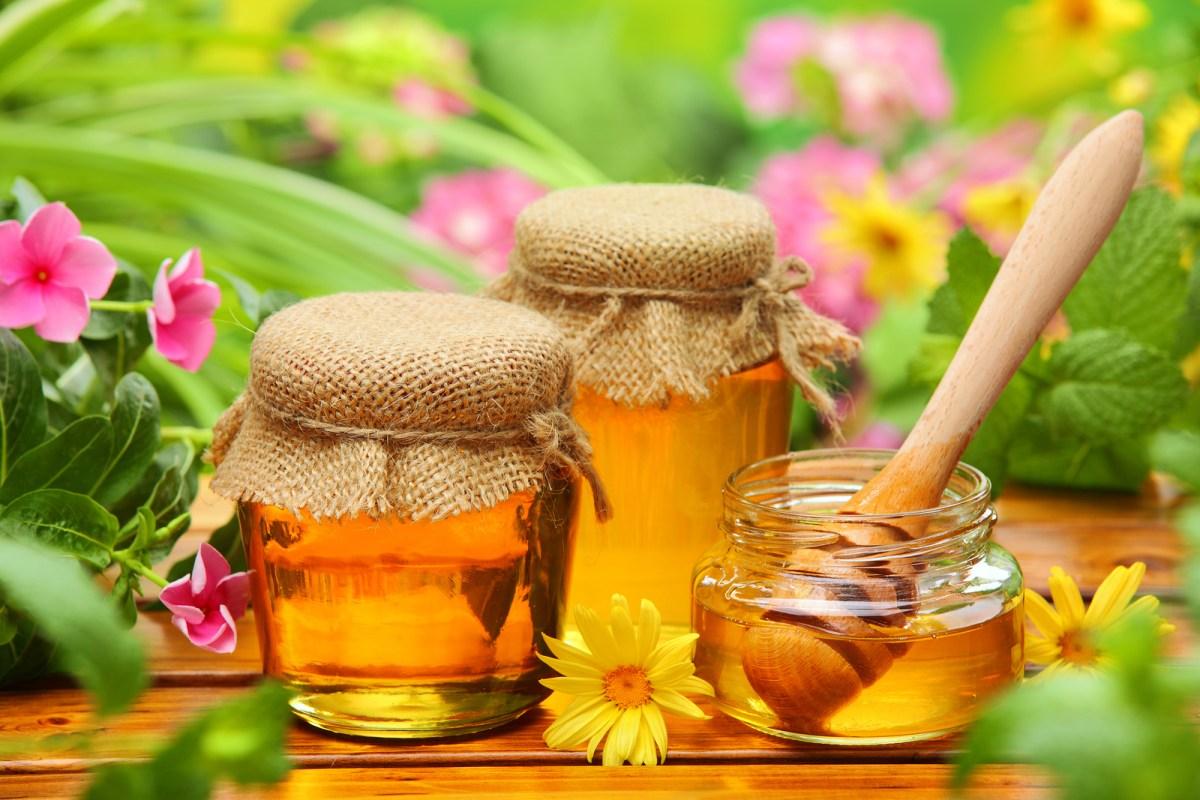 Rå Økologisk Honning - Dræber bakterier!