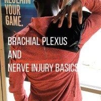 Brachial Plexus And Nerve Injury Basics