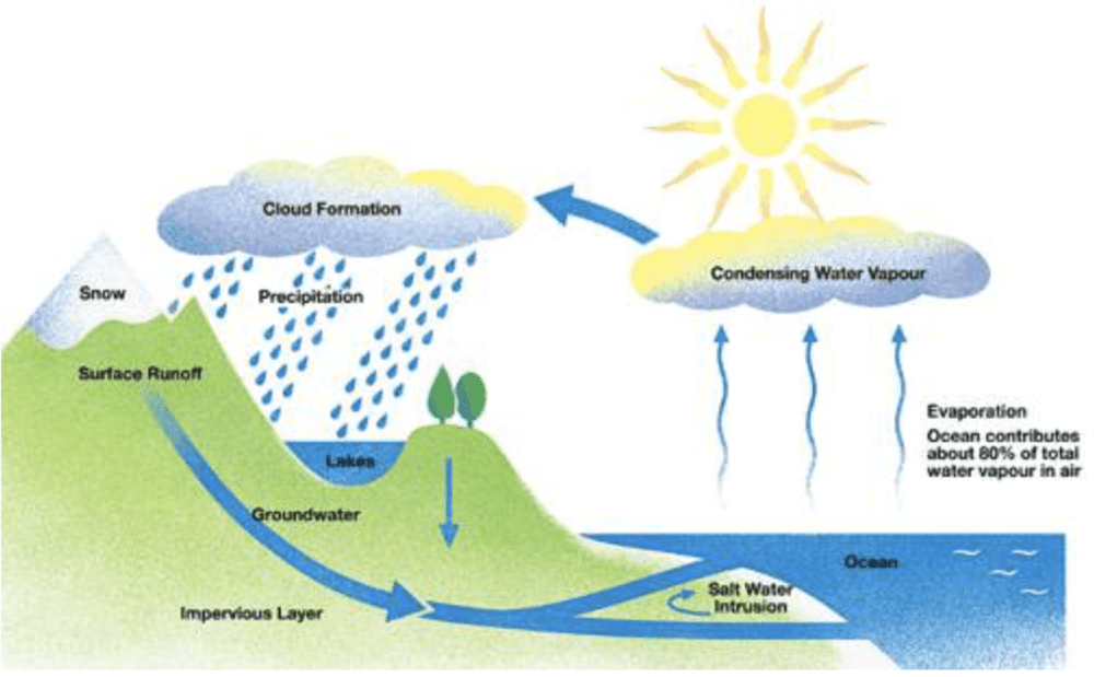 medium resolution of the diagram below shows the water cycle which is the continuous movement of water on above and below the surface of the earth