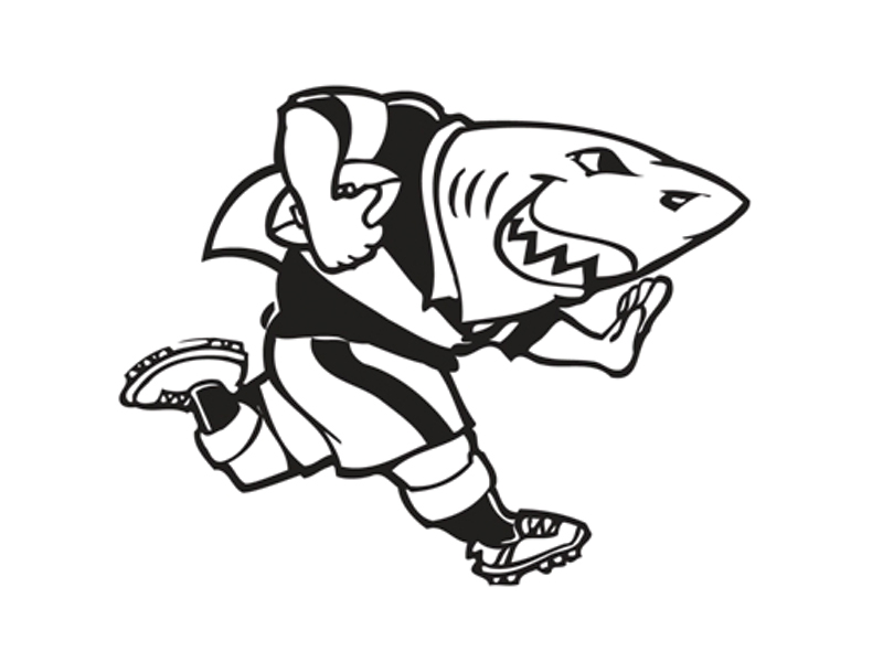 Win Sharks rugby tickets