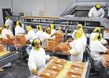 sistemas-de-gestion-haccp-industria-de-alimentos