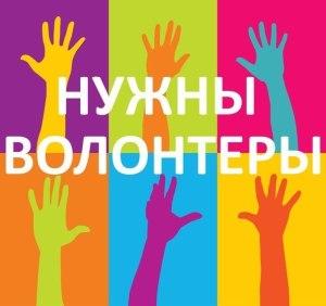 Добровольческая (волонтерская деятельность).