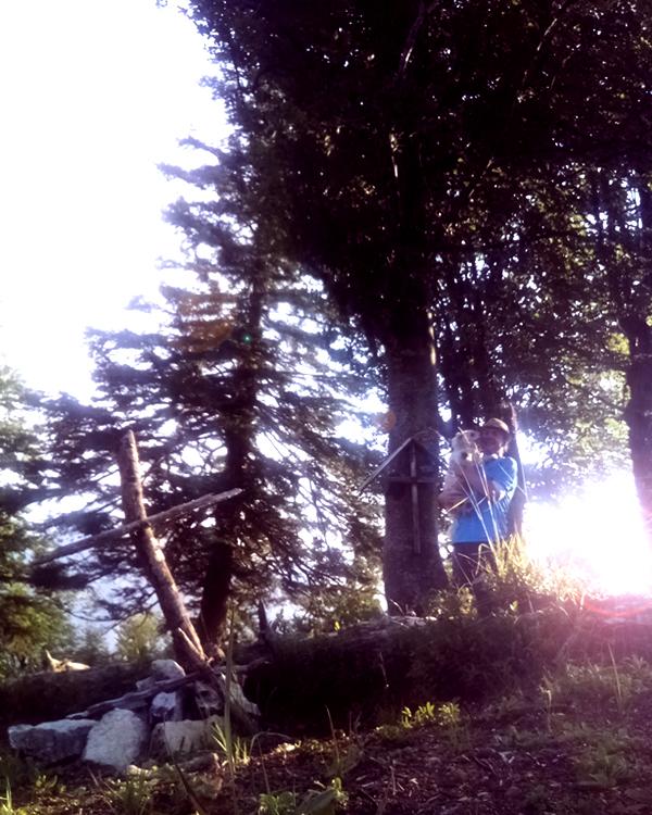 Gipfelkreuz zwei und drei am Schneiderberg
