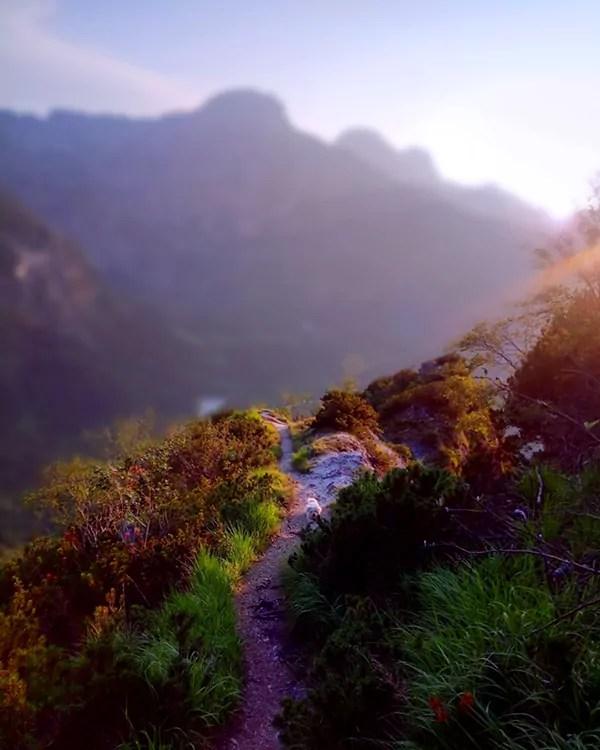 Abstieg bzw. Weg Aufstieg Schneiderberg