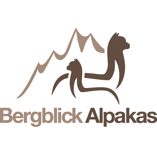 Bergblick Alpakas Bayern
