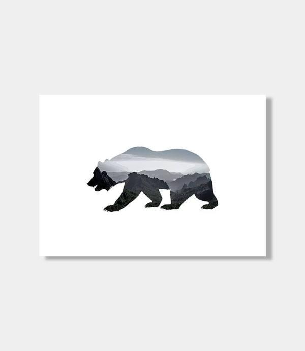 Amano Bear
