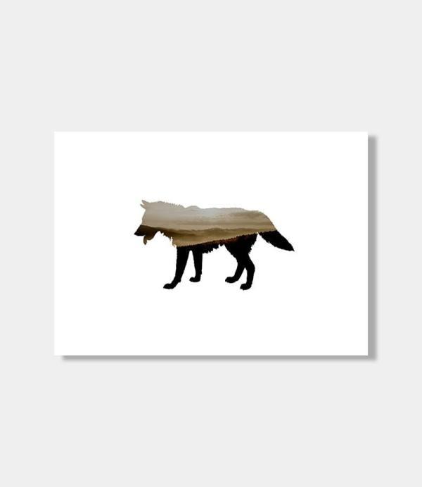 Amano wolf