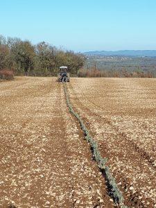 plantation de plantes aromatiques tracteur