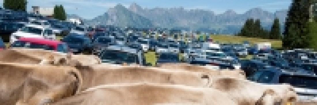 SzeneAlpen – Folgen des Tourismus